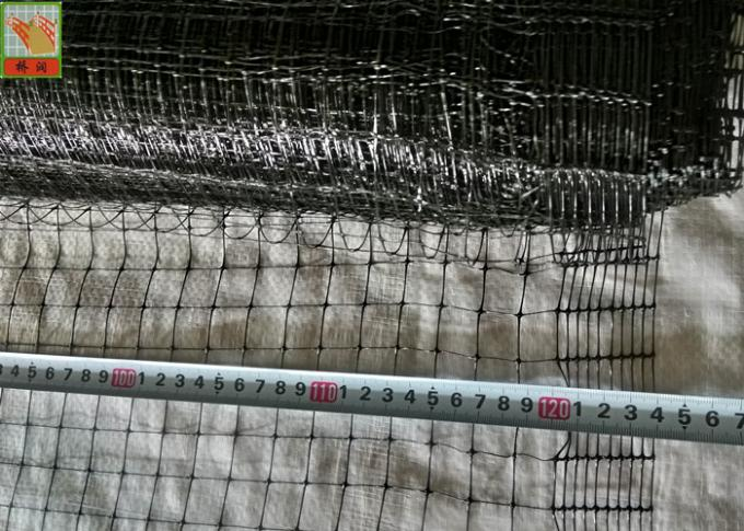 Black Plastic Poultry Netting, Plastic Chicken Mesh Fence, Light Weight, PP Materials, 40GSM