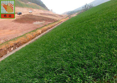 China Black Color Erosion Control Net For Three Dimensional Erosion Blanket 250g / Sqm supplier