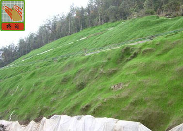 China Reinforced Geomat For Erosion Control , Landscape Mesh Erosion Control 350 g / sqm supplier