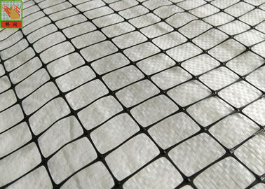 China Industrial Plastic Protective Netting Support Mesh 50g/Sqm 500m Length Black Color supplier