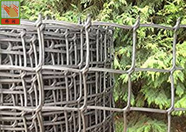 China Garden Mesh Netting for Climbing Plant Support Hole Open 19 mm 0.5 Meters Wide supplier