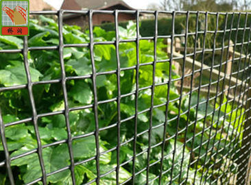 China Customized Color Plastic Plant Support Mesh / Garden Net For Climbing Plants supplier