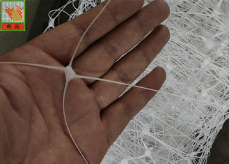 China PP Material Trellis Support Netting 10FT X 1640FT White Color 3 Years Lasting Time supplier