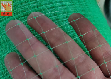 China Green Light  Reinforcement Nets , Erosion Control , Polypropylene Oriented Light Nettings For Erosion Control Blankets supplier