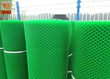 China Design for Farm House HDPE Black Plastic Mesh, Chicken Coop Wire Netting, 50 Meters Length , Customized Color supplier