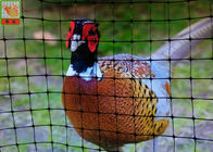 Garden Plastic Poultry Netting / Chicken Wire Dog Fence Eco Friendly