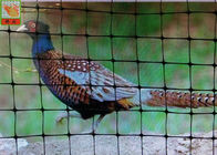 Rust Proof Plastic Pheasant Netting Fencing , Black Coated Chicken Wire
