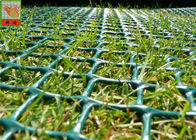 China Grass Protection Mesh , Garden Mesh Netting , Turf Reinforcement Mesh , 650 GSM , HDPE Materials factory