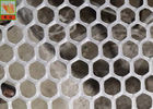 Hexagonal Plastic Plaining Netting , Extruded Plastic Netting , HDPE Materials , 13mm Hole Size , 500GSM