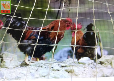 Customized Clear Plastic Chicken Wire Poultry Fence High Tensile Strength