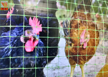 Strong Green Plastic Coated Chicken Wire / Poultry Mesh Fencing Easy Install