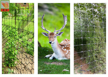 Deer Barrier, Deer Fence Netting, PP Materials, Extruded Plastic Netting, 100 Meters Height
