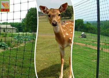 Plastic Deer Fence Netting , Garden Deer Mesh Fencing 1.2  Meters Height
