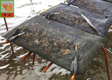 Diamond Style Aquaculture Netting Black Oyster Mesh Cage HDPE Materials